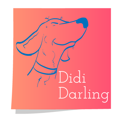 The Adventures of Daring Didi Darling