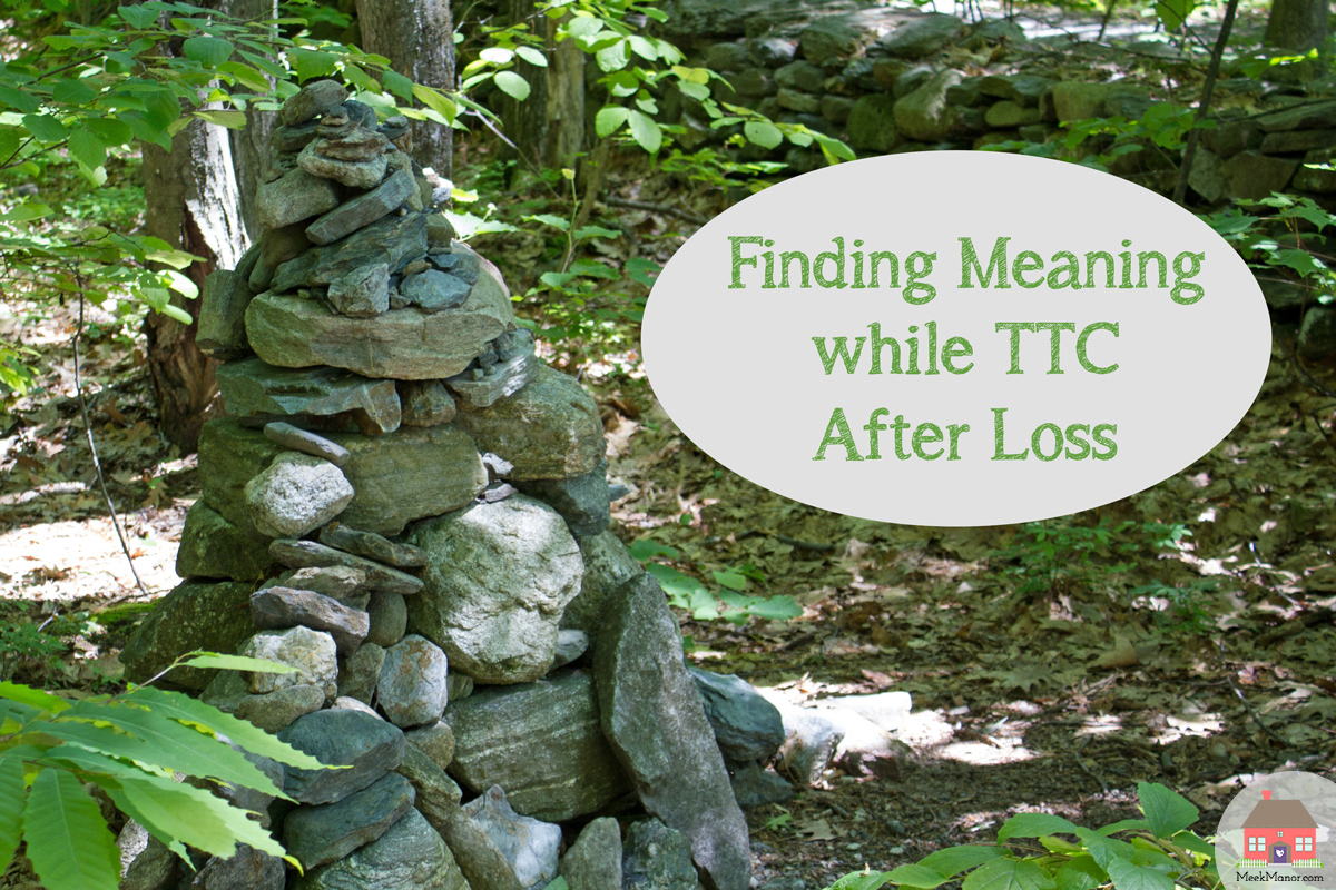 Finding Meaning while TTC After Loss