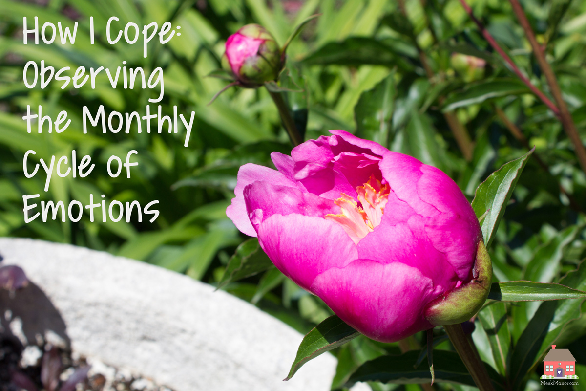 How I Cope: Observing the Monthly Cycle of Emotions