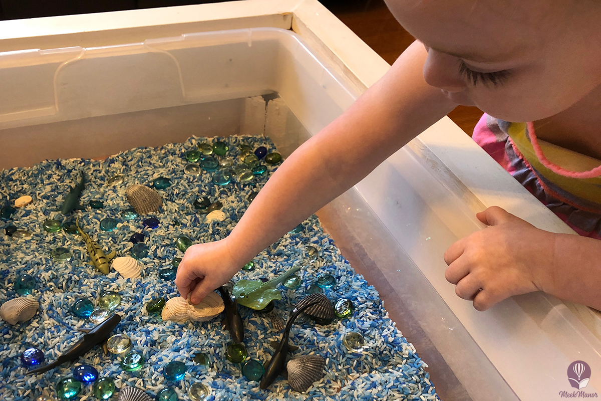 S is for Shark: Shark Sensory Bin, Two Ways